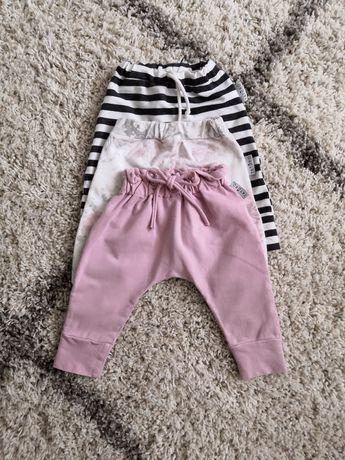 Spodnie Taturo roz 68