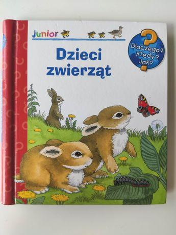 Dzieci zwierząt książka z okienkami