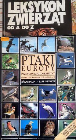 Albumy zwierząt i ptaków 2 egzemplarze