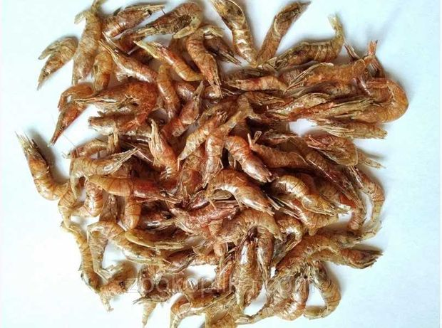 Креветка сухая - корм для рыб
