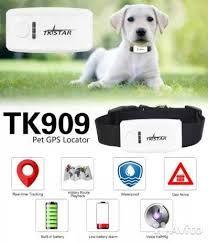 GPS ошейник для домашних животных с GPS TK STAR TK909 tk 909 tk911