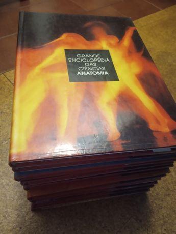 Vendo enciclopédia de 11livros em bom estado