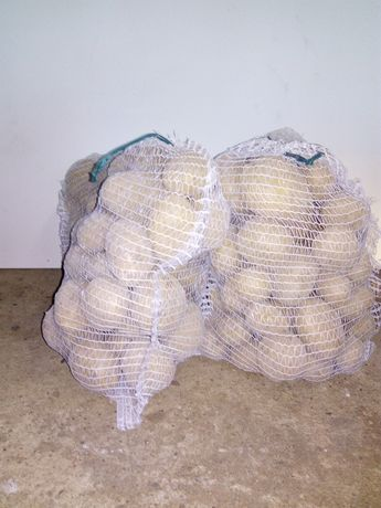 Sprzedam ziemniaki 0,80 zł