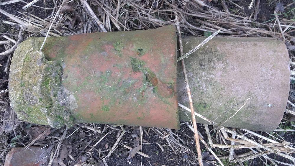 Gasior Gosiory do Dachowki Karpiowki Betonowej