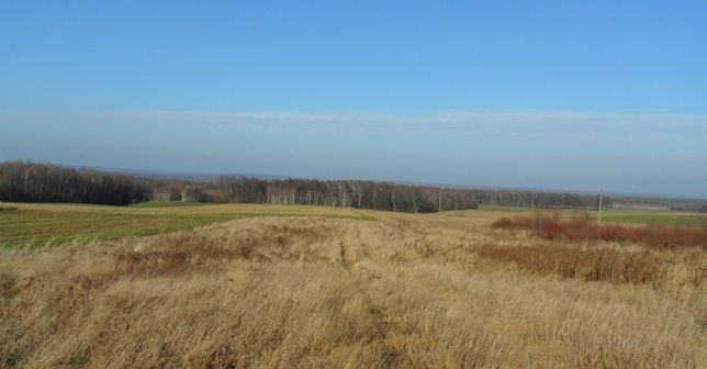 Widokowa, duża działka w spokojnej, zielonej okolicy.