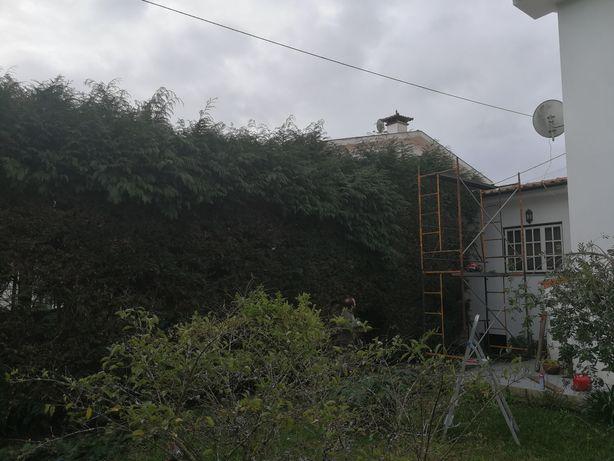 Jardins manutenção e podas