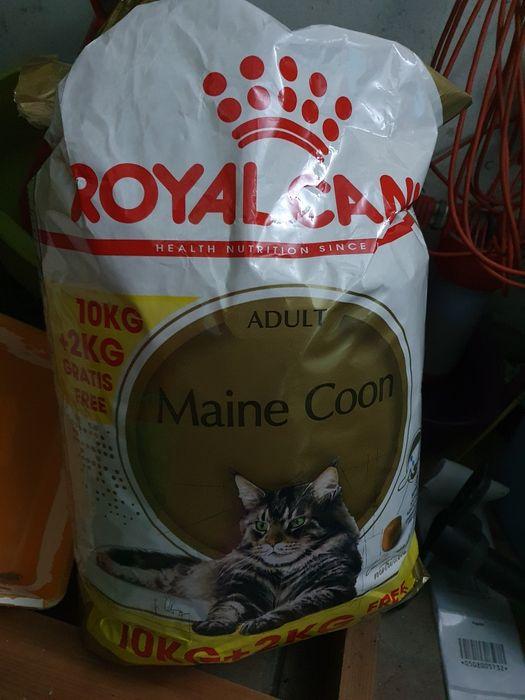 Royal Canin Maine Coon 11 kg Lębork - image 1