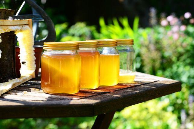 Продам 100% МЕД без цукру та хімії. Купити мёд, honey, мід з пасіки!