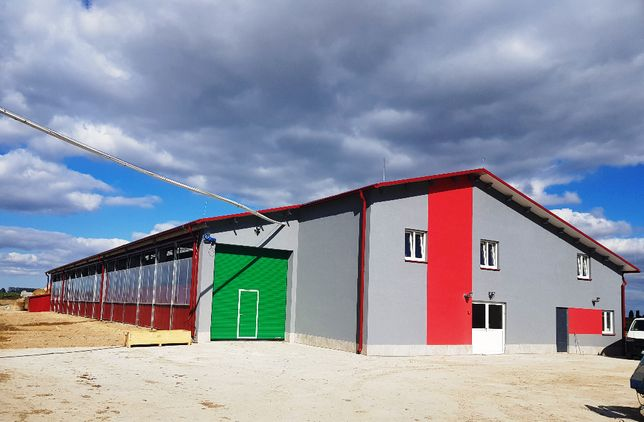 Budowa budynków inwentarskich , obór dla krów, silosów MLEKO-SYSTEM