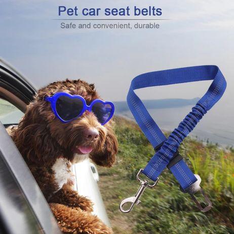 Cinto segurança para animais