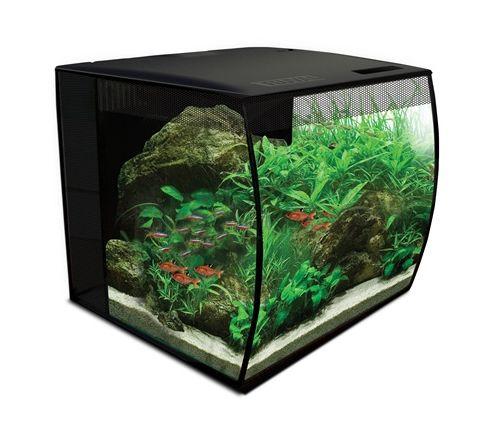 Akwarium z wypukłą szybą FLUVAL FLEX Aquarium 34L