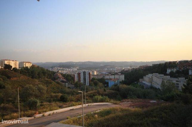 Lote, Coimbra, Olivais