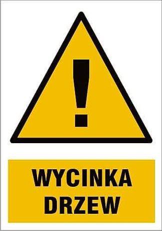 Usługi podnośnikiem koszowym - wycinka drzew Ozorków, Stryków, Łęczyca
