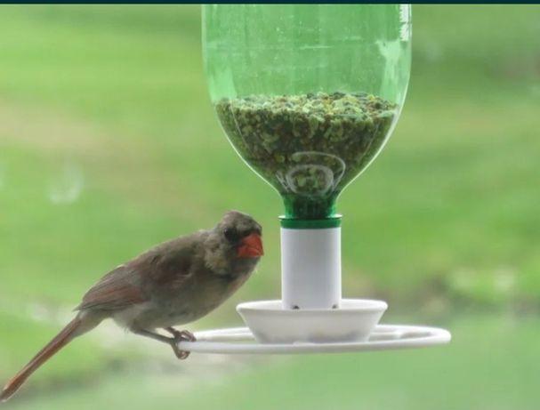 Karmnik dla ptaków z gwintem na butelkę