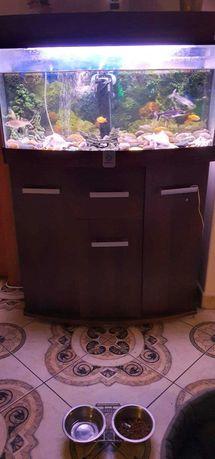 Sprzedam Akwarium z rybami