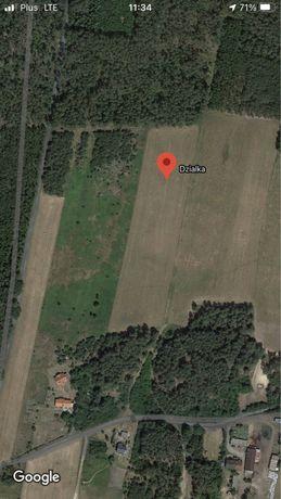 Działka 3000m2 w okazyjnej cenie-Pokrzywno k.Osieka