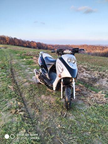 Mustang MT 50QT 8