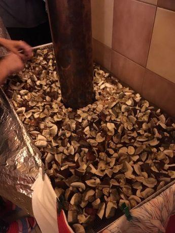 Grzyby suszone podgrzybki 100 gram