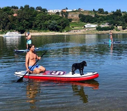 Prancha SUP stand up paddle