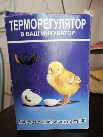 Продам терморегулятор инкубаторный