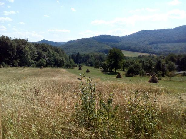 Продаж землі в Мигове