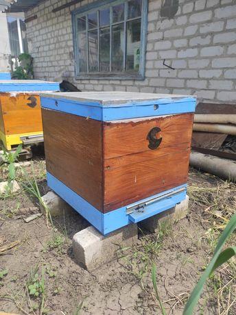 Улей. Улья для пчел.