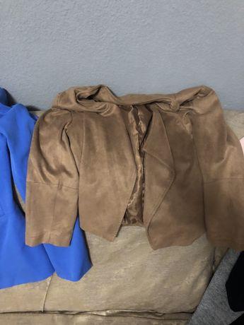 Піджаки