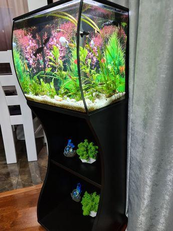 Продам акваріум з рибками
