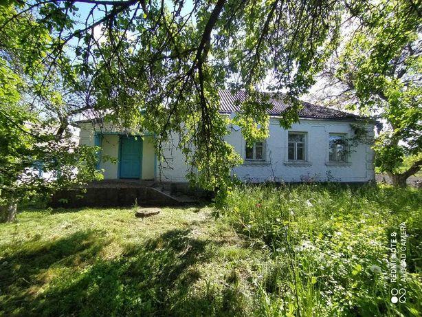 Будинок с. Дибинці Богуславський р-н