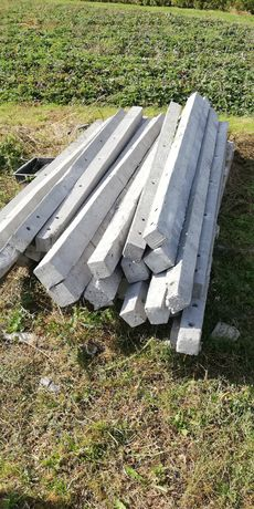 Slupki betonowe do malin, ogrodzeniowe