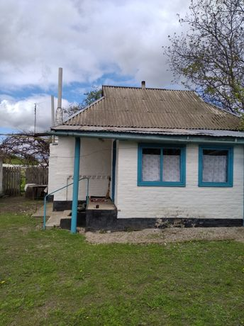 Продам будинок в селi Войково, Згурiвського району