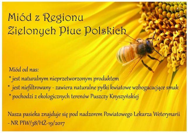 MIÓD NATURALNY/ Miód pszczeli / Miód z pasieki / Pierzga pszczela