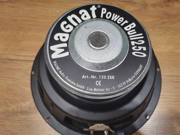 Głośnik Magnat Power Bull 250 sprawny
