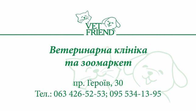 Акция!Кастрация Стерилизация Вызов ветеринар, ветеринарный врач Днепр