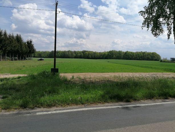 Działka budowlano-rolna Starościn Kolonia