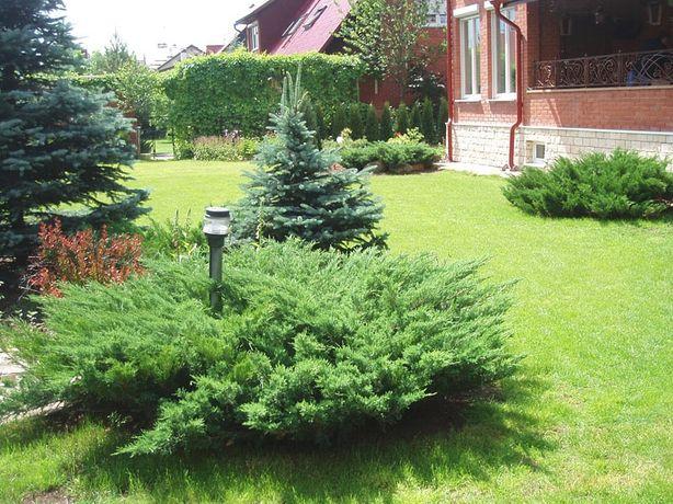 Благоустройство и озеленение придомовой территории
