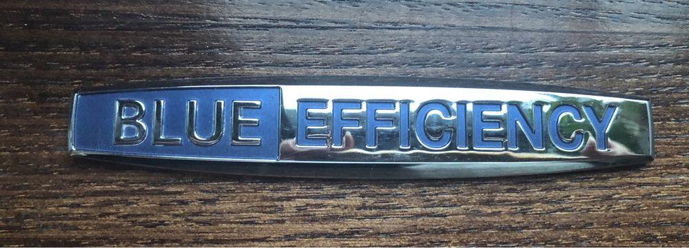 emblemat Blueefficiency Lubin - image 1