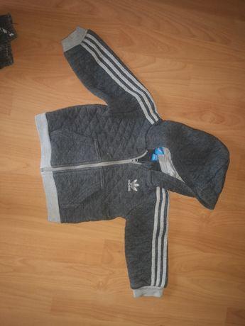 Bluzy rozmiar 74