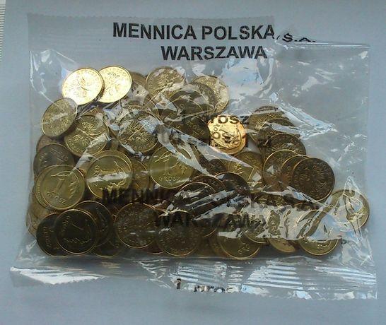 monety-1 grosz 2014 r MW-woreczek menniczy
