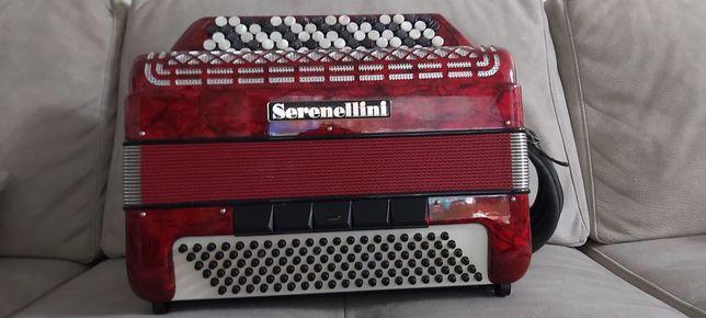Acordeão Serenellini botões