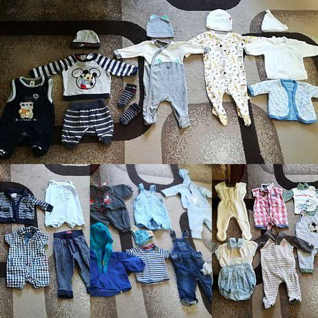 Речі на вибір, боді, штани, кофта