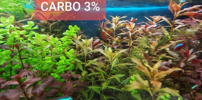 Carbo 1 litr co2 węgiel w płynie