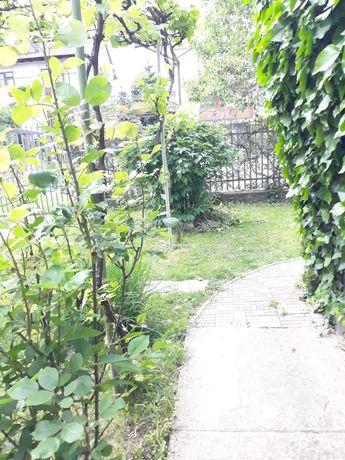 Продається будинок в м.Ужгород район Компотний