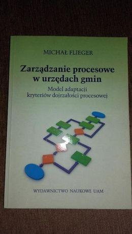 Zarządzanie procesowe w urzędach gmin Michał Flieger