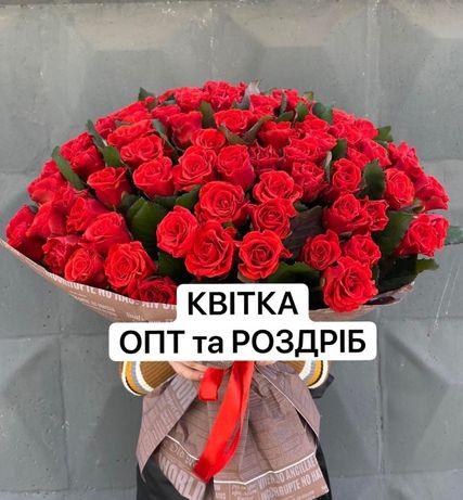 Роза недорого от 20 грн