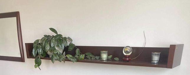 Półka drewno lakier ciemna