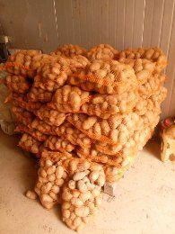 Sprzedam ziemniaki jadalne Denar lord