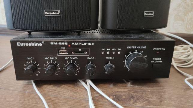 Колонки Euroshine WS-51S 4 шт + усилитель звука Euroshine SM-265