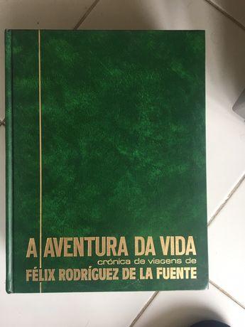 Conjunto de 6 Livros