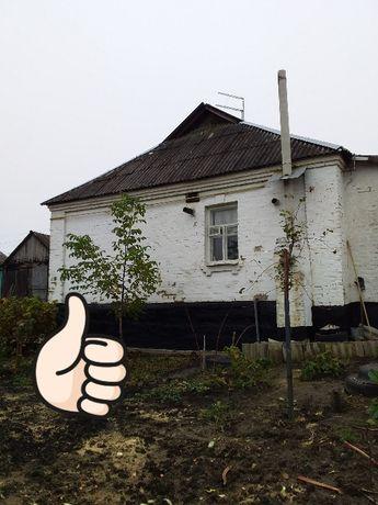 Продам дом Кожуховка, Васильковский р-н. Эксклюзив.